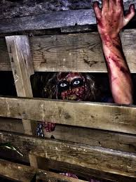 Scary Halloween Decorations Photos by Best 25 Haunted Trail Ideas Ideas On Pinterest Can Dogs See