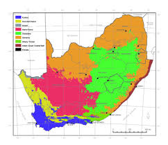 biomes map vegetation of south africa plantz africa