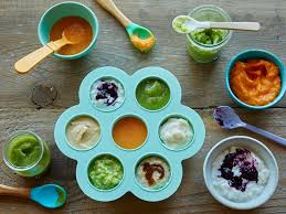 homemade baby food recipes for 8 to 10 months photo gallery