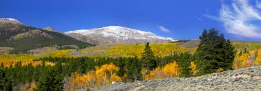 Colorado Colorado Advance Directives Consortium Dedicated To Improving