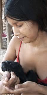 Awa by Extraordinary Photos Of The Awa Amazon Tribe Daily Mail Online