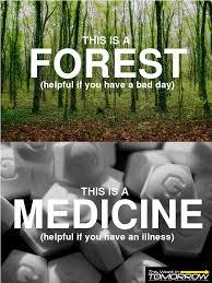 Antidepressant Meme - that this is an antidepressant meme sucks vol 3 no 49 2