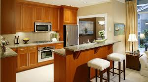 awe inspiring design kitchen cabinet refinishing exceptional