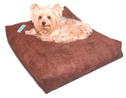 Foam Dog Bed The Best Dog Beds For Pugs Pugspot