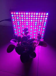 how to build a led grow light cheap led grow lights for indoor plants creative horssols com