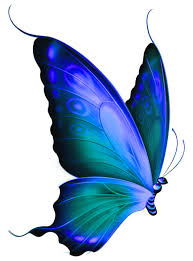 Blue And Green Butterfly - transparent blue and green deco butterfly clipart gallery