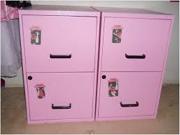 Diy Room Decor For Teenage Girls Bedroom Small Teenage Room Ideas Bunk Beds For Adults Rooms Diy