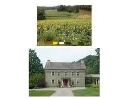 choosing exterior house colors amykranecolor com