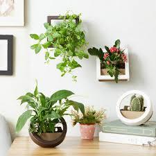 online get cheap hanging plastic planters aliexpress com