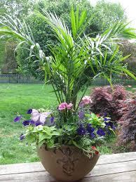 best 25 large flower pots ideas on pinterest flower planters