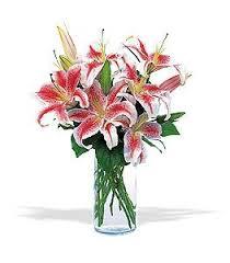 Flower Delivery Edina Mn - vase of oriental lilies white bear lake mn florist same day
