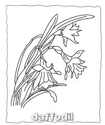 flowers coloring pages printable flower coloring pages of
