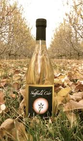 Wholesale Sparkling Cider 241 Best Cider Images On Pinterest Beer Brewing And Apple Cider