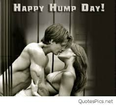 Hump Day Meme Dirty - funny hump day wednesday pictures cartoon saying