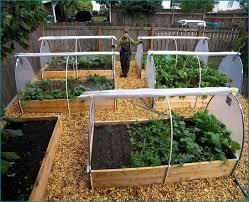 Backyard Planter Ideas Home Vegetable Garden Design Enchanting Backyard Gardens Ideas