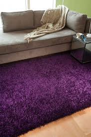 Solid Color Area Rugs Clearance Purple Shag Rugs Are Simply Amazing Solid State Pinterest