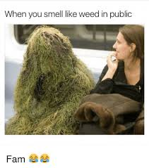 Fam Memes - when you smell like weed in public fam fam meme on esmemes com