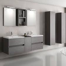 bathroom outstanding matrix wall hung vanity double basins and