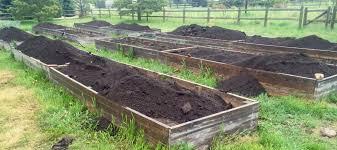 this compost will destroy your garden the survival gardener