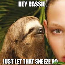 Sneeze Meme - hey cassie just let that sneeze go meme whisper sloth 1107