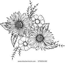 drawing images of flowers best 25 flower drawings ideas on