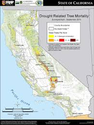 Wildfires California September 2015 by Climate Signals Map Drought Related Tree Mortality September 2015