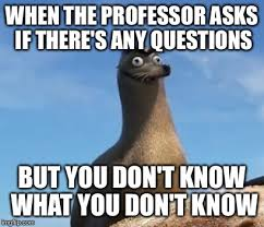 Any Questions Meme - when the professor asks if there s any questions but you don t know