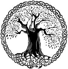 crann bethadh celtic tree of shinrin reiki