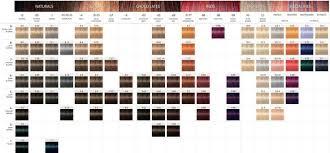 igora royal hair color color to develiper ratio ask education for hairdressers the colour wheel schwarzkopf