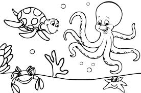 imagenes animales acuaticos para colorear dibujos de animales marinos para colorear