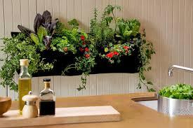 Indoor Garden Kit Indoor Vertical Garden Kit Ideas For The Perfect Indoor Garden