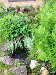 Backyard Pictures The 25 Best Small Backyard Ponds Ideas On Pinterest Small
