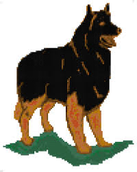 belgian sheepdog south africa belgian tervuren miniature cross stitch counted cross stitch