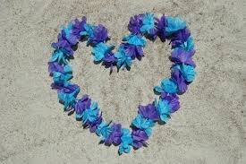 Purple And Blue Flowers Sorted By Purple And Blue Heart Shaped 52422 Beach Photo