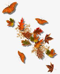 floating butterfly pattern butterflies float butterfly creative