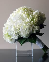 bridal flowers lush hydrangea collection bridal flowers to go
