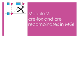 cre lox and cre recombinases in mouse genome informatics mgi modul u2026