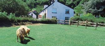 Holiday Cottages Ireland by Holiday Cottages In England Scotland Wales Ireland Rent Uk