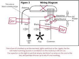ceiling fan wiring restoreyourhealth club