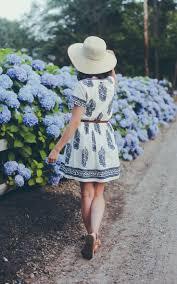 31 best hydrangea heaven images on pinterest flowers hydrangeas
