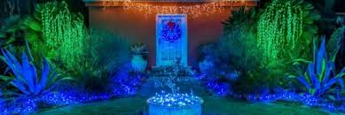 Botanical Gardens Lights S December Nights Lights