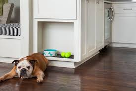 what s the best flooring for dogs and cats