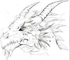 drawings of dragons drawings i like pinterest dragon sketch