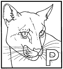 panther coloring animals town animals color sheet