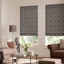 Pleated Shades For Windows Decor Captivating Pleated Shades And Windows Pleated Shades For