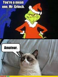 Grumpy Cat Memes Christmas - christmas grumpy cat meme grinch funny cat pictures