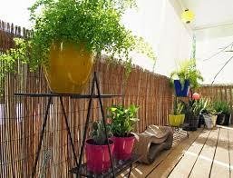bambus fã r den balkon 133 best decor balcony images on balcony back garden