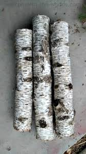 birch tree decor birch tree christmas diy decor welcome to the woods