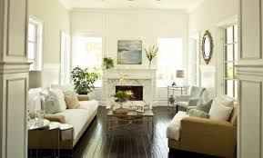 living room decorating small spaces amazing cozy narrow living