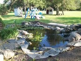 Build Backyard Pond 51 Best Building A Backyard Pond With Florida Pond Management